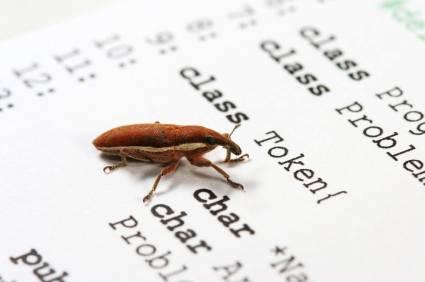 debugging bugs